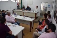 Reunião dos  vereadores com representantes da EDP (28 de janeiro de 2021)