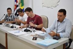 Sessões Ordinárias (2 e 16 de dezembro de 2019) - Sessões Extraordinárias (12, 13 e 20 de dezembro de 2019)
