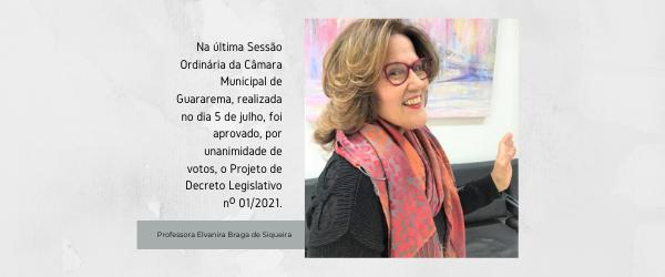 Read more about the article Câmara Municipal faz homenagem à Professora Elvanira