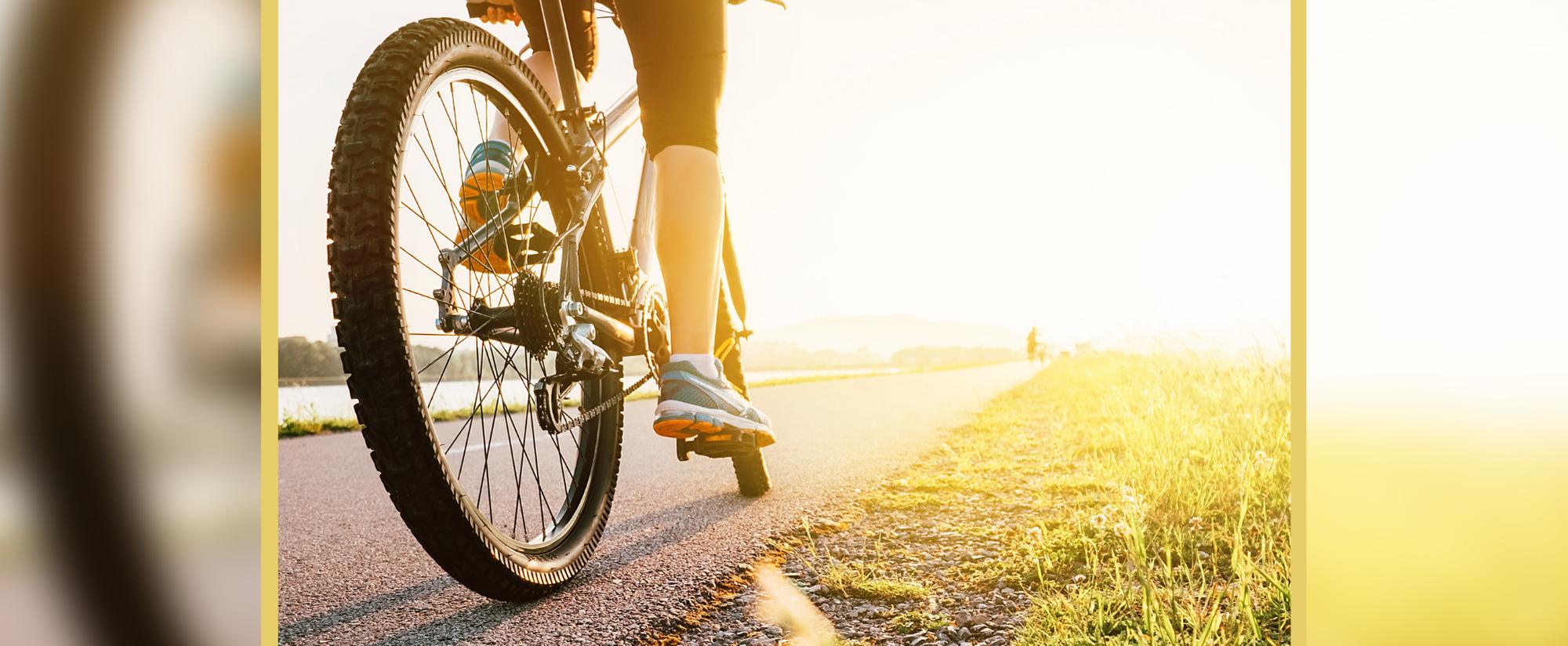 Read more about the article Vereadores aprovam Projeto de Lei que institui a Semana do Ciclismo