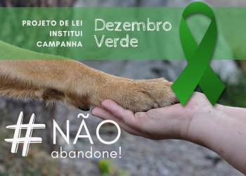 Campanha Dezembro Verde fica instituída para conscientização sobre a questão do abandono de animais
