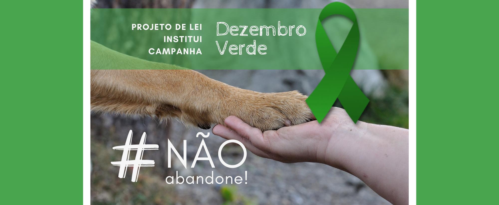 Read more about the article Campanha Dezembro Verde fica instituída para conscientização sobre a questão do abandono de animais